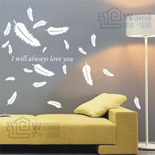 Wall decals and vinyl wall art - feather wall decal sticker