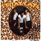 SUPERB STRAY CATS SIGNED PHOTO + COA!!!