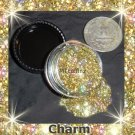 Charm Gold Loose Glitter Makeup Cyber Hologram 5 Gram  ---FREE Shipping