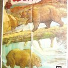 NORTH COUNTRY Original  Nature FILM POSTER Bear Bears