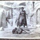 KERWIN MATHEWS Original Sword and Sandals PHOTO The WARRIOR EMPRESS Lion 1960