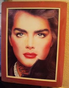 BROOKE SHIELDS Signed in Person AUTOGRAPH Richard Bernstein ART Interview PHOTO
