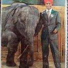 SABU The ELEPHANT BOY Laminated ORIGINAL Sunday 1942 New York Newspaper COVER