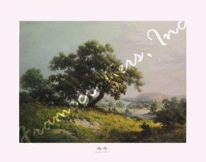 Dalhart Windberg Big Tree 12x16 art print