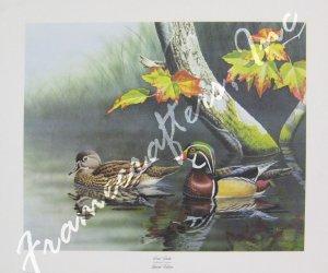"""Wood Ducks"" by Ronald J. Louque 18x24"