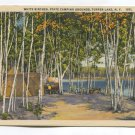 White Birches State Camping Grounds Tupper Lake New York Postcard