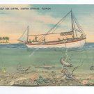Deep Sea Diving Tarpon Springs Florida Postcard