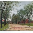 Approach to the State Hospital for the Insane St Peter Minnesota Postcard