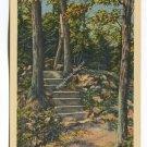 Footpath West Rock Park New Haven Connecticut Postcard