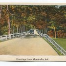 Greetings from Monticello Indiana Postcard