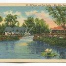 Mill Pond and Fish Hatchery Blue Hole Castalia Ohio Postcard