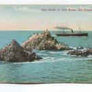 Seal Rocks at Cliff House San Francisco California Postcard