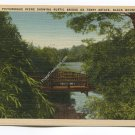A Picturesque Scene showing Rustic Bridge on Terry Estate Black Mountain North Carolina Postcard