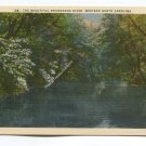 The Beautiful Swannanoa River Western North Carolina Postcard
