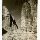 Temple of Sinawava Narrows Lion National Park Utah Postcard