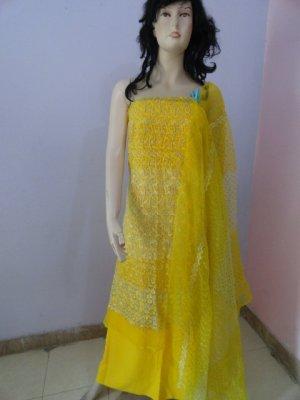 PAKAPPAREL : Embroidered Tissue/Net Salwar Shalwar Kameez- C10-167-1