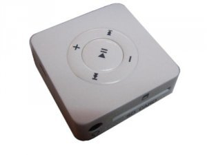 Flash Memory Card Reader/MP3 Player