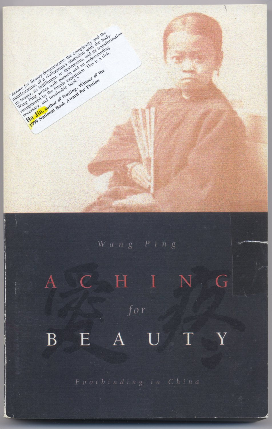 Aching For Beauty -- Footbinding in China (PB) Wang Ping Chinese Culture Fetish Golden Lotus