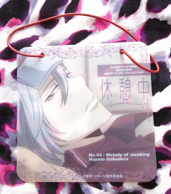 Katekyo Hitman Reborn Multi-Plate - NO.04 Gokudera