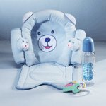 Blue Bear Car Kit andCar seat cover