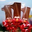 Elmos chocolate lollipop first birthday