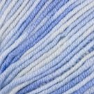 Crystal Palace Merino 5 Print Superwash Wool Yarn 2305 Jeans