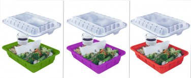 Cool Gear Lunch Box Take-out Containers 2 Pk w Section Dividers Condiment Cup
