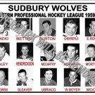 1959-60 EPHL SUDBURY WOLVES HEADSHOTS TEAM PHOTO