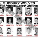 1960-61 EPHL SUDBURY WOLVES HEADSHOTS TEAM PHOTO