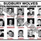 1961-62 EPHL SUDBURY WOLVES HEADSHOTS TEAM PHOTO