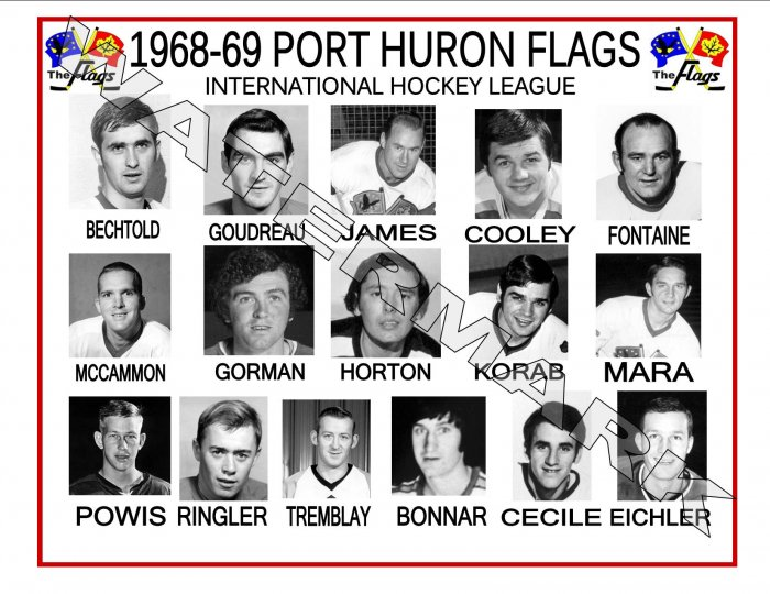 1968-69 PORT HURON FLAGS IHL HEADSHOTS TEAM PHOTO