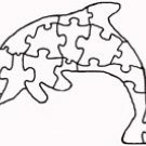 Dolphin Puzzle Pattern