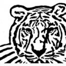 Bengal Tiger Pattern