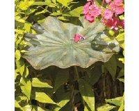 Lily Leaf Bird Bath II
