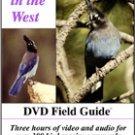 Better Birdwatching DVD West