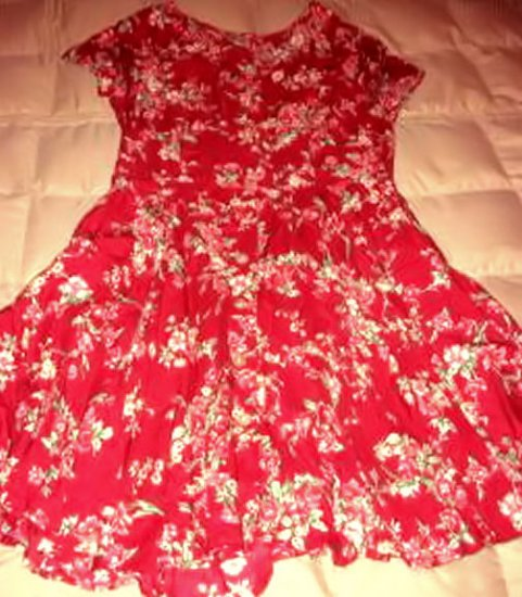 BASS DRESS sz 6 floral PRINT women's clothes shabby chic country red pink button sexy