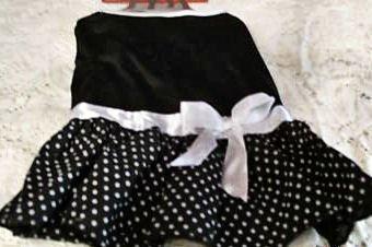medium dog black polca dot dress cute clothes clothing dress top shirt t-shirt