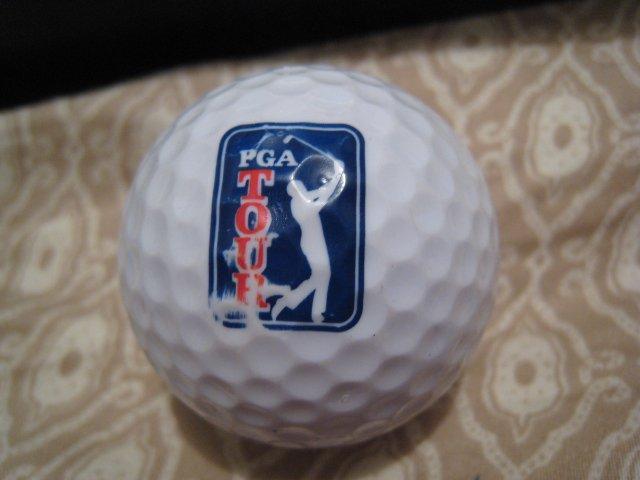 PGA TOUR - COLLECTOR'S GOLF BALL SPORTS MEMORABILIA DECORATIVE COLLECTIBLE HOME HOBBY