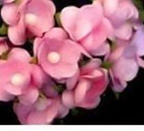 PINK SCRAPBOOK WEDDING BIRTHDAY GIFT 20 LOT FLOWERS PAPER