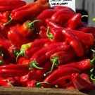 Corno di Toro Rosso Red Pepper Seeds 75+ garden family home plant seed vegetable fruit