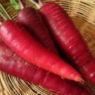 Carrot Seeds Cosmic Purple 200+ seeds garden family home plant seed vegetable fruit