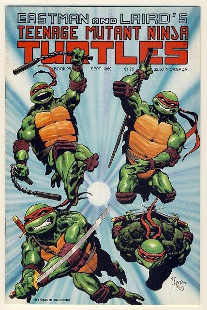 "Teenage Mutant Ninja Turtles Vol. 1 #25 Comic Book - TMNT - ""The River"""