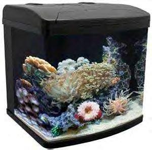 Aquapod 12 Gal System W/filter & Pc Lamps