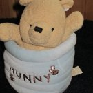 Disney Classic Plush Pooh Winnie the Pooh in a Hunny Pot Musical Crib Toy