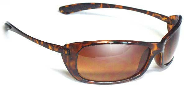 The Catbird Ladies Sunglasses Tortoise Shell Frames Birdz  Eyewear