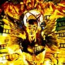 Toad The Wet Sprocket - Fear CD #8904