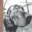 Willy Porter - Dog Eared Dream (CD 1995) #10181