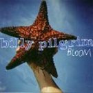 Billy Pilgrim - Bloom (CD 1995) #11212