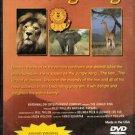 The Jungle King DVD - FAMILY FUN #P584