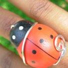 Wooden Ladybug